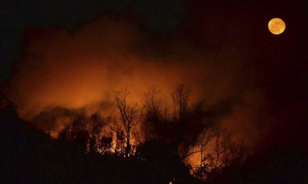 Wildfires Rage Across the South, Scorching More Than 100,000 Acres