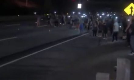 Anti-Trump protester blocks freeway and gets hit by a car!