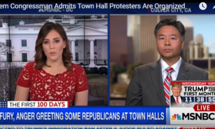 Dem Lawmaker: Protests at GOP Town Halls Are Organized – Records Show Ties to Soros, Clinton (VIDEO)