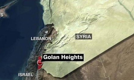 Syria Claims Israeli Jet Shot Down After Strike Near Palmyra Overnight