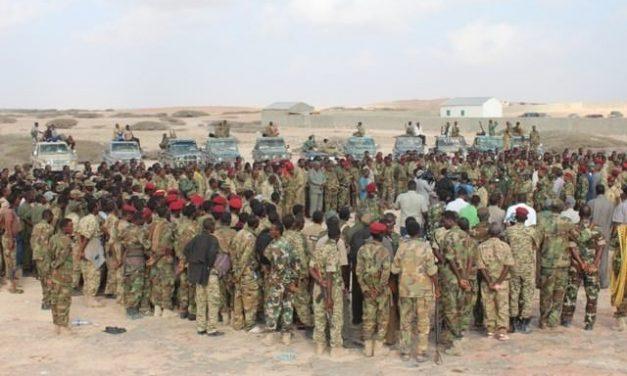 Al-Shabaab Islamists Stone Mother-of-Eight to Death in Somalia