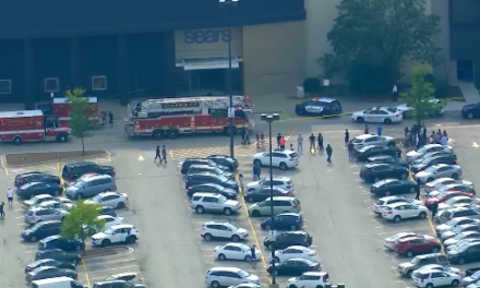 SUV barrels through shopping mall in Chicago suburb running down shoppers!