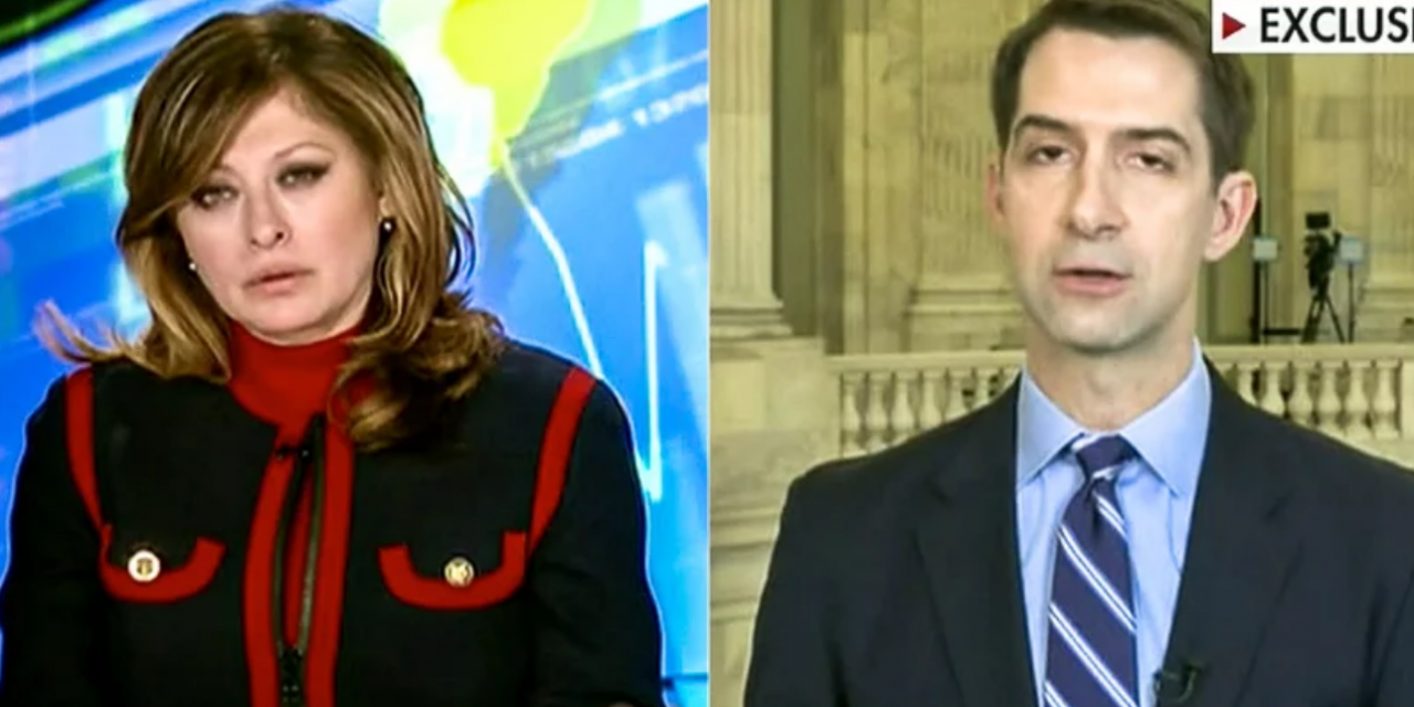 Tom Cotton hints without evidence coronavirus is Chinese biological warfare: 'Err on the side of caution'