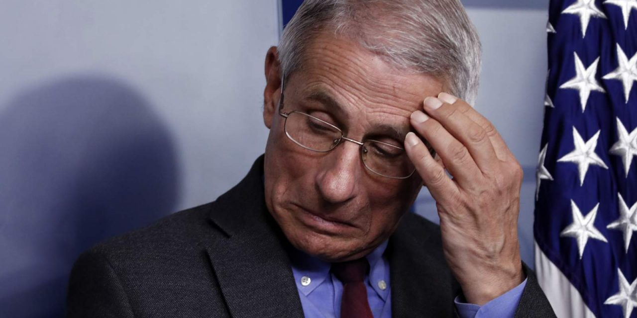 Fauci knew about HCQ in 2005 — nobody needed to die