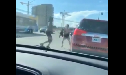 Black woman beats White woman WITH HER OWN DOG dangling from a leash. Racial tensions rising fast in USA