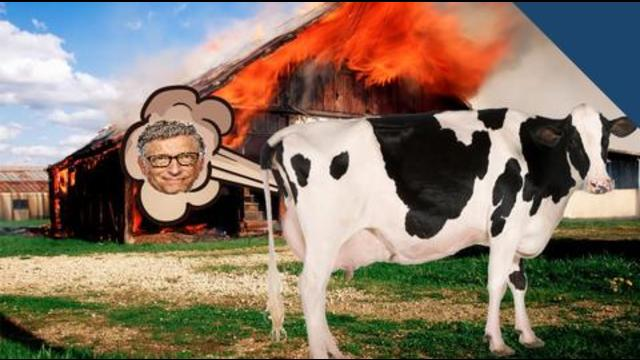 """Bill Gates to """"ENGINEER HUMANS"""" to be meat intolerant or to make you eat FAKE MEAT…. to save the planet!!"""